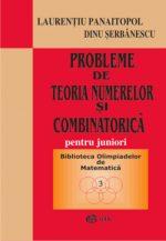 probleme-de-teoria-numerelor-si-combinatorica_1
